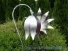 Gartenstecker-Blume-Edelstahl